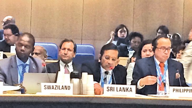 The 142nd Session of the Executive Board of the WHO in progress.