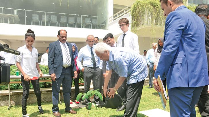 Minister Dr. Amunugama planting a sapling at the NSBM premises, while others look on.