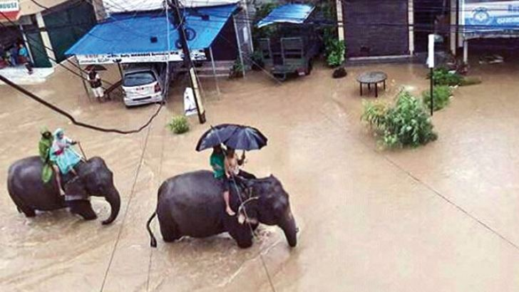 People on elephants walk through a flooded street in Nepal.