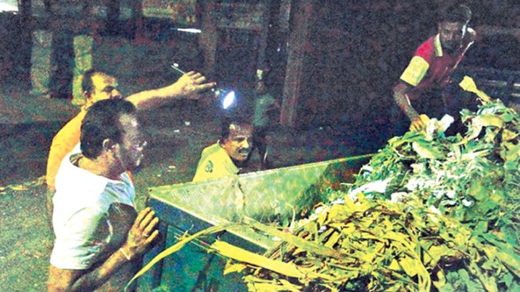 Thewarapperuma collecting  discarded vegetables at the Dambulla Economic Centre around 3 am yesterday.