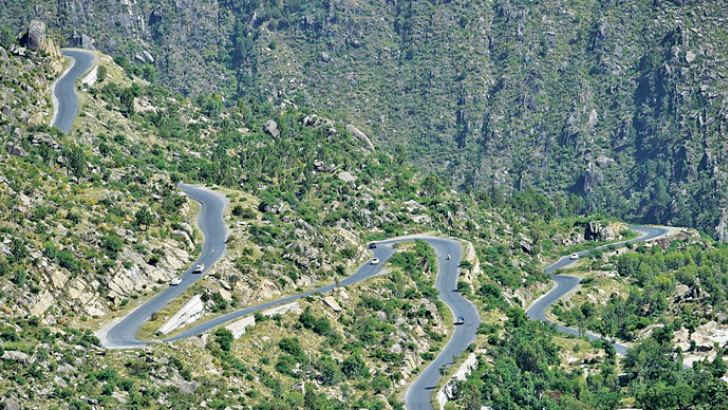 A road track at a tree plantation site in Buner in northwest Pakistan. The change is drastic: Around the region of Heroshah, previously arid hills are now covered with forest.