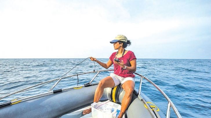 Dr Asha De Vos the Founder of Oceanswell and pioneer on Blue Whale Research