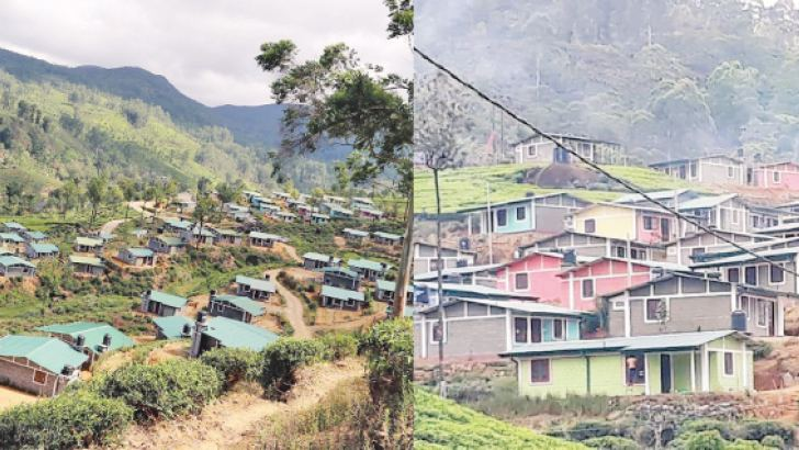 The houses built at Dayagama West Estate in Nuwara Eliya.