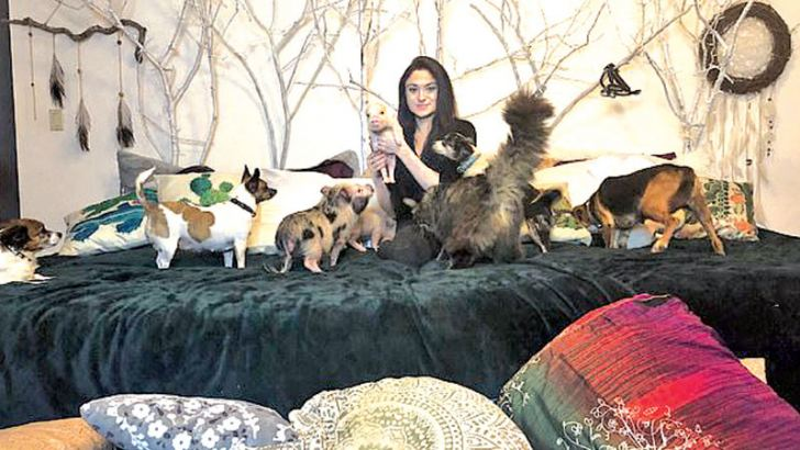 Adri with her animals in bed- she is seen with her dogs, cats and even piglets on her specially constructed 10ft-wide bed