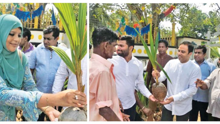MP Harshana Rajakaruna distributing coconut seedlings.