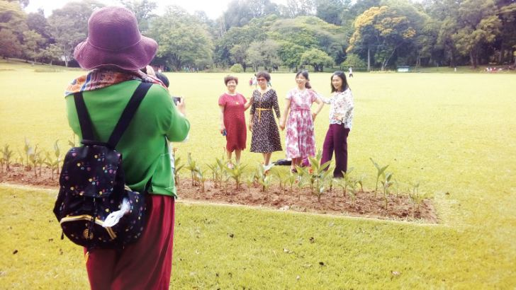 Tourists enjoy a visit to the Peradeniya Botanical gardens