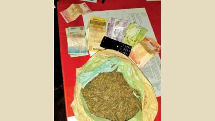 The cannabis and cash.