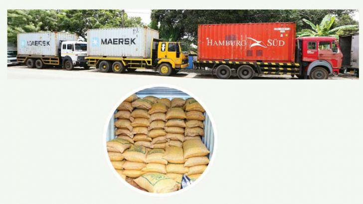 The three 40-foot containers containing 33,000 kilograms of illegally imported Turmeric seized by the Bloemendal Police yesterday. Pictures by Nissanka Wijeratne