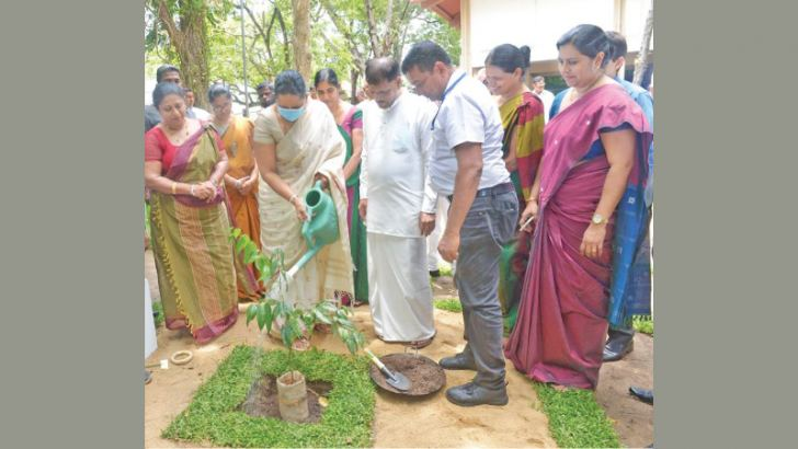 Health Minister Pavithra Wanniarachchi watering a herbal plant while Indigenous Medicine Promotion, Rural and Ayurvedic Hospitals Development and Community Health State Minister Sisira Jayakody and officials look on.