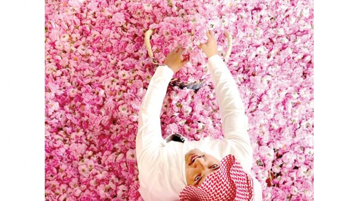 Known as the city of roses, with approximately 300 million blooms every year, Taif has more than 800 flower farms.