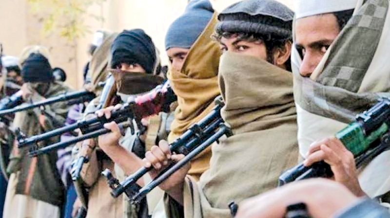 The ummah is at war with itself. What other way is there to describe the brutal bloodletting by Muslims of Muslims in Syria, Iraq, Libya, Yemen, Afghanistan, Turkey and, of course, Pakistan.  - DECCAN CHRONICLE