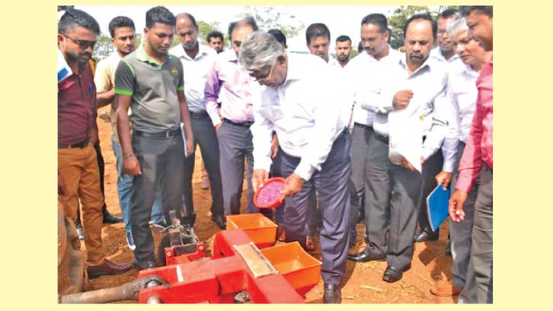 State Minister Siripala Gamlath commencing the maize cultivation.