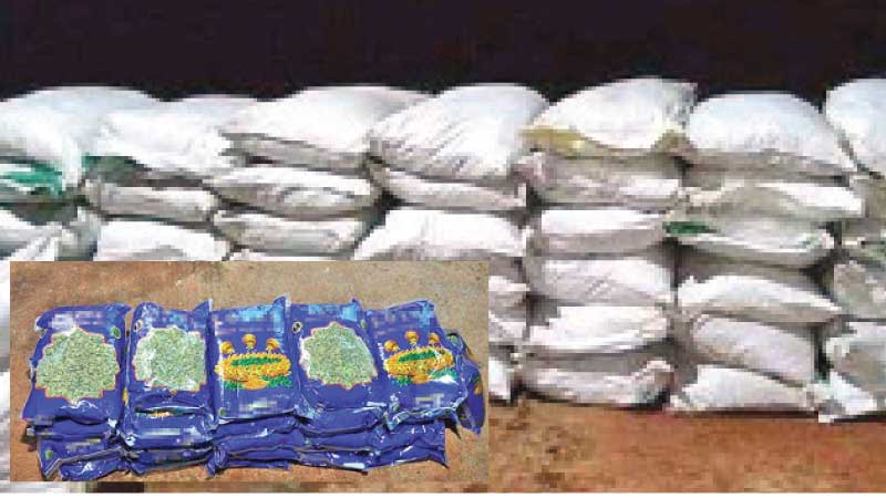 The seized consignments of turmeric and cardamom.  Picture courtesy: Navy Media Unit.