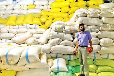 A CAA official at a warehouse with paddy stocks hoarded by unscrupulous traders.