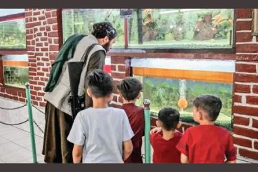 An armed Taliban gunman surrounded by children peers into the aquarium and reptile house at the Kabul zoo.