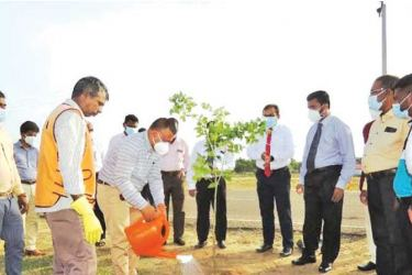 State Ministry Secretary Prof. Ranjith Dissanayake planting a sapling along with other ministry officials.