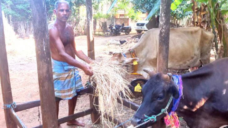 The App is useful for animal husbandry and dairy farming