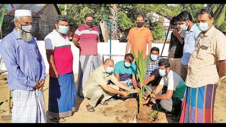 Sri Lanka Muslim Congress Palamunai Central Committee officials participating in a tree planting campaign to mark the 21st death anniversary commemoration of SLMC Founder M.H.M. Ashraff.